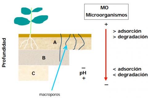 ¿Cuál es el comportamiento del suelo?