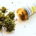 Marihuana medicinal: efectos y usos